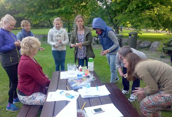 Kemikaliegruppen samlad till sommaravslutning i Stadsträdgården i mitten av juni.