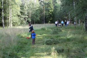 Naturskyddsföreningen i Karlstads kretsäng en oas i I2-skogen.